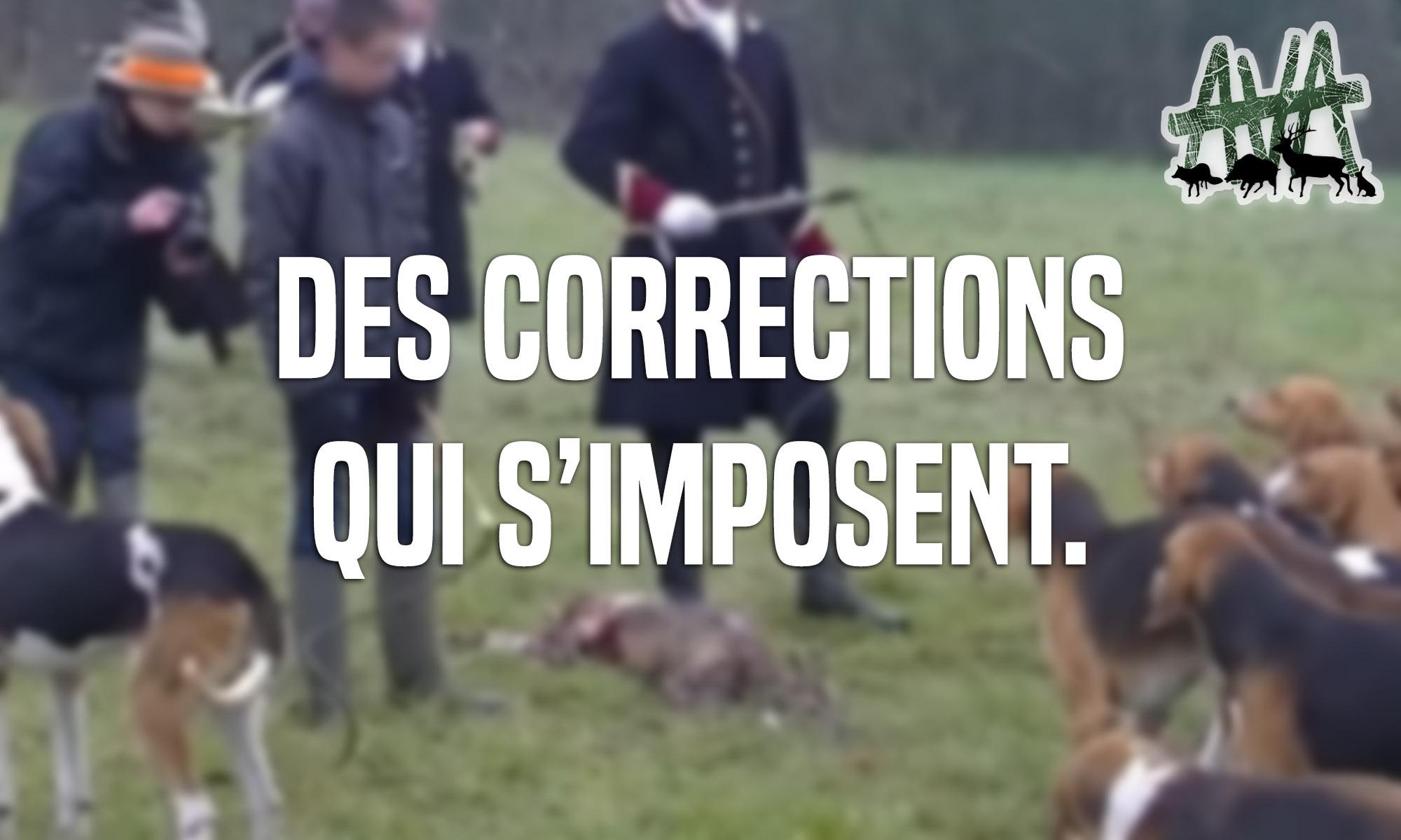 chevreuil-mort3